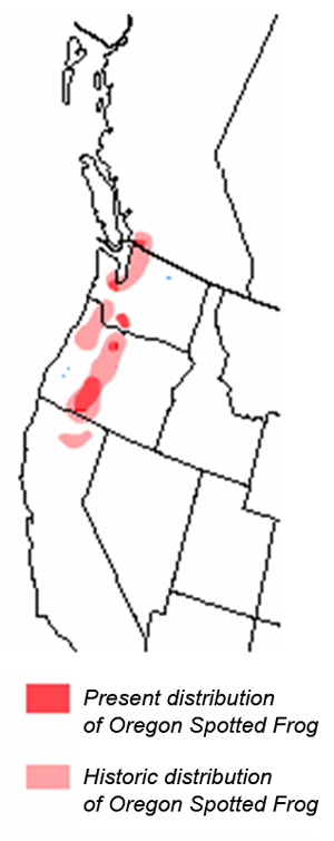 Figure 2. Present and historical distribution of the Oregon Spotted Frog in North America (adapted from Hayes et al. 1997).