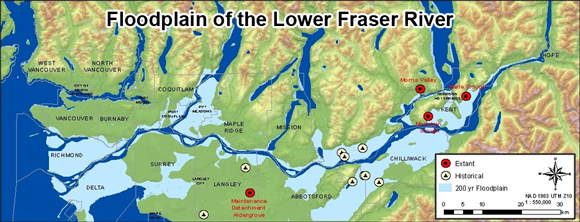 Figure 6. Map illustrating the floodplain area of the lower Fraser River (light blue area).
