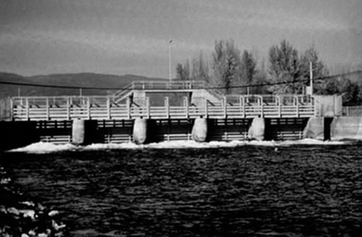 Photo of the same site shown in Figure 18 (the Okanagan River where it enters Skaha Lake at Penticton), but taken at ground level and 71 years later in 1983. The lake and river levels are now controlled by a dam and the river has been straightened, channelled and bordered by dykes.