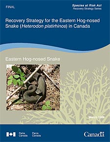 Species at Risk Act Recovery Strategy Series  Recovery Strategy for the Eastern Hog-nosed Snake (Heterodon platirhinos) in Canada Eastern Hog-nosed Snake March 2009